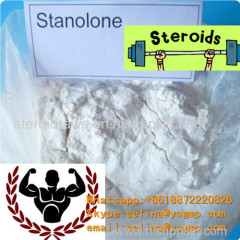 Muscle Building Steroids Powder Stanolone