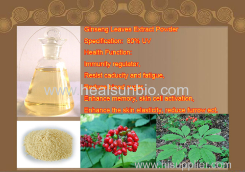 Panax Ginseng Leaves Extract Powder Ginsenoside 80%UV