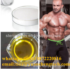semi Finished steroid oil test U 500 Testosterone Undecanoate