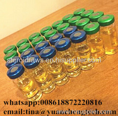 Pure Yellowish Steroids Liquid Testosterone Undecanoate 500mg/Ml