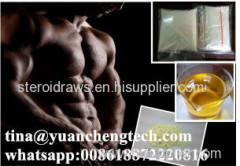 Injectable Test Steroids Liquid Test Pheny / Testosterone Phenylpropionate for Bodybuilder