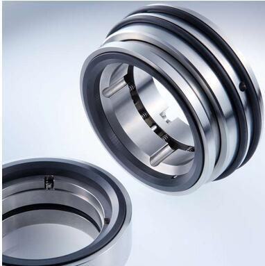 Stationary multiple springs seals