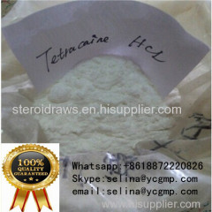 Pharmaceutical Material Powder Tetracaine HCl for Local Anesthetic
