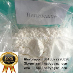 Local Anesthetic Pain relief Powder Benzocaine HCL Benzocaine Hydrochloride