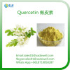 Natural Extract Quercetin HPLC95%/UV98%