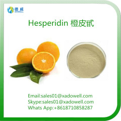 Natural Plant Extracts Citrus Aurantium Extract For Preventing Cancer Hesperidin 90% CAS 520-26-3