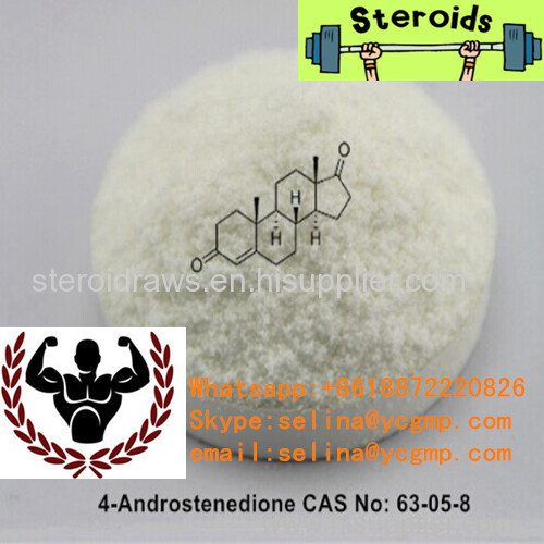 Muscle Growth Hormone Powder 4-Androstenedione