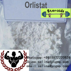 Fat Burner Orlistat Lose Weight Steroids Raw Powder Orlistat