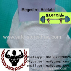 Steroids Oral Progesterone Hormone Megestrol Anabolic