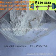 White Cutting Cycle Steroids Powder Estradiol Enantate