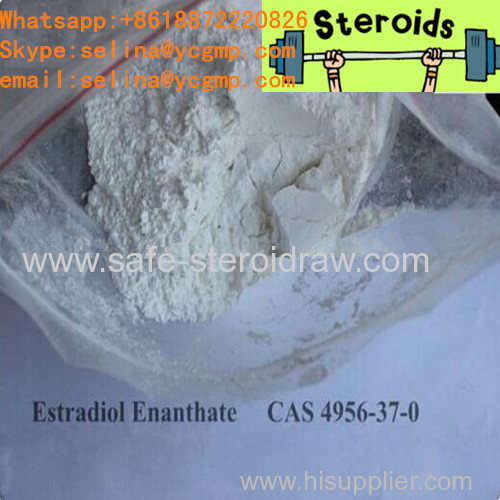 White Cutting Cycle Steroids Powder Estradiol Enantate