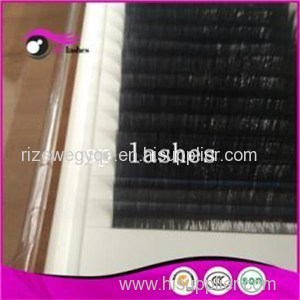 Synthetic Hair Eyelashes 12mm Silk Eyelash Extensions Eyelash Supply