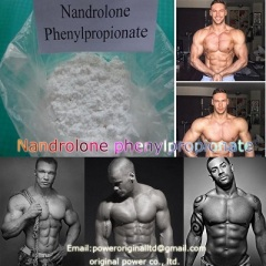 Bodybuilding Steroid Dura bolin Raw Powder Nandrolone Phenylpropionate Gain Muscle Burning Fat Npp