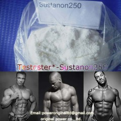 Top Quality Injectable Oil Steroid Powder Testosterone Sustanon 250