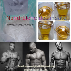 High Purity 99% Steroid Hormone Nandrolone Decanoate