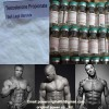 Safe Ship Bodybuilding Steroid Hormone Testosterone Propionate 100mg/Ml