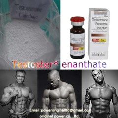 Top Quality Lowest Price Bodybuilding Steroid Testosterone Enanthate