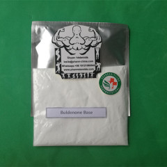 Bodybuidling Gear Boldenone Base Steroid Hormone Powder