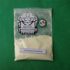 Buy Best Price Raw Steroids Hormone Trenbolone Enanthate Parabolan Powder Sources