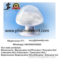 Pharmaceutical Bupivacaine hydrochloride CAS: 14252-80-3 Local Anaesthesia