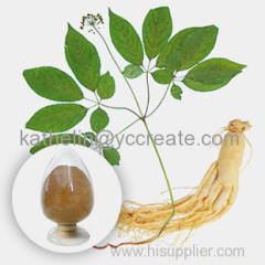 Natural High Quality Ginseng Extract Powder