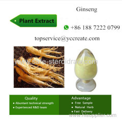 Different Purity Plant Extracts Ginseng Extract powder