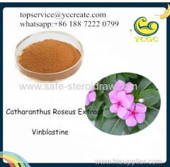 Vinca Rosea Extract Catharanthus Roseus Extract Vinblastine