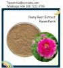 Peony Root Extract Powder Paeoniflorin