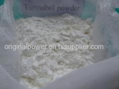 Steroid powder Anabolic 4-Chlorotestosterone Acetate /Clostebol Acetate