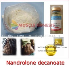 Anabolic Steroid Powder Deca Nandrolone Decanoate with Best Price