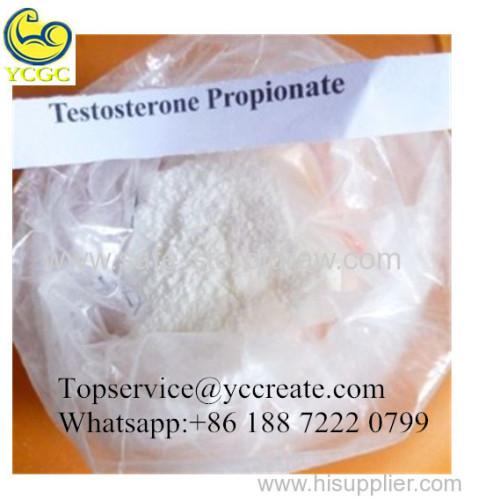 Bodybuilding Testosterone Steroid Powder Testosterone propionate