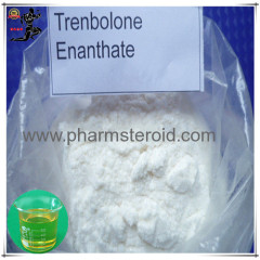 Light Yellow Powder Trenbolone Enanthate Parabolan For bodybuilding