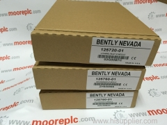 BENTLY NEVADA 125720-01 professional service