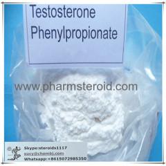 Testostérone Raw stéroïde Testostérone phénylpropionate Test PP Pour Bodybuilder
