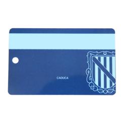 PET SLE66R01 RFID 카드