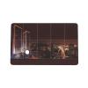 PET SLE 66R35 RFID Card