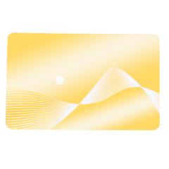 PET ISSI4469 Cartão RFID