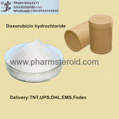 Anticancer Raw 99% Doxorubicin hydrochloride CAS:25316-40-9 As Anti-cancer