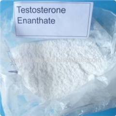 Wholesale Fast Acting Steroid Oil Form Testosteron Enanthate 250mg/ml