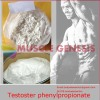 Legal Medicine Steroid Powder Testosterone Phenylpropionate