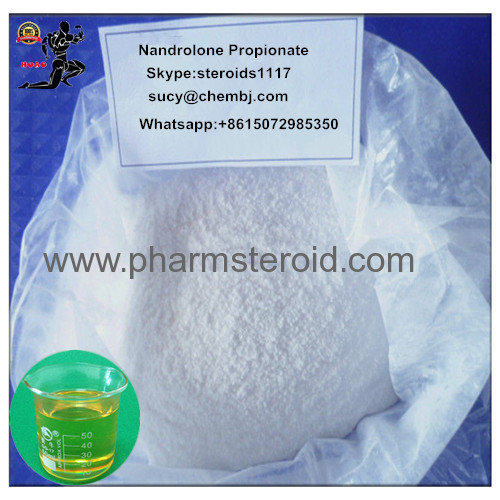 Nandrolone Steroid Nandrolone Propionate White Powder For Bodybuilder