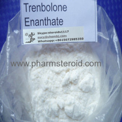 99% Trenbolone Enanthate Parabolan Trenb E Raw Powder Pharmaceutical Grade