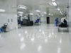Pharmaceutical clean room project
