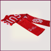 Factory Direct 2016 Euro Football Scarf Embroidered Logo Fan Scarf