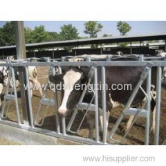 Cattle Headlocks for 4 cows