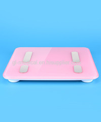 Mini Digital Weighing Scales