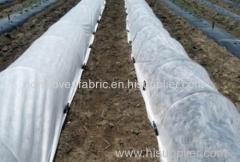 Tecido não tecido para agricultura