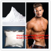 Nandrolone series body building powder 99% Nandrolone White Powder