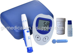 Blood glucose meter for blood sugar test