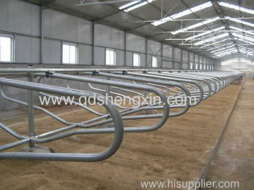 High quality Cattle Free Stall